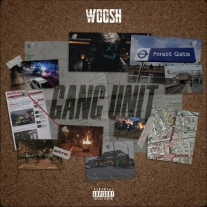 Woosh - Critical Hits (feat. S13)